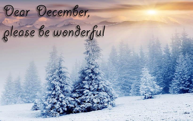 dear-december-sarandaadriana-sarandipity