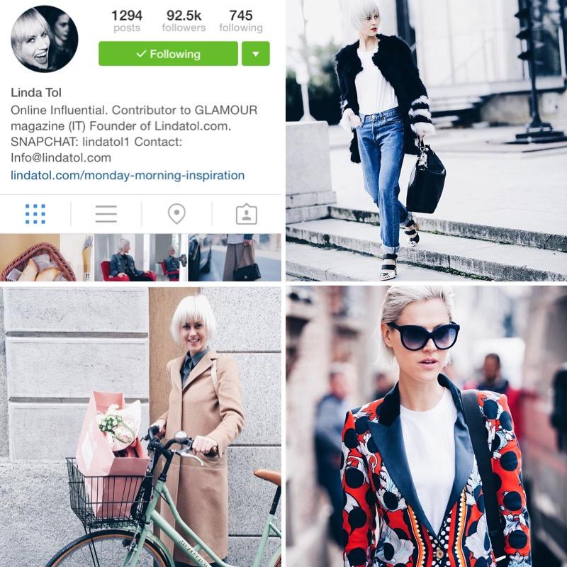 top 5 instagram accounts linda tol